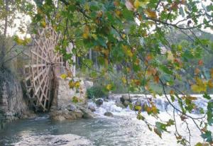 Inventario del medio natural de los rios Jucar y Cabriel. El proyecto EFLUS MF3