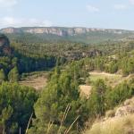 Medio físico de Castilla-La Mancha: Resultados del Tercer Inventario Forestal (IFN3) en Castilla-La Mancha.