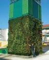 Fotografia de portada Jardineria vertical jardines que trepan muros 1