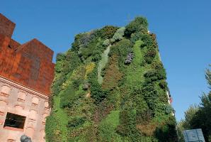 Fotografia de portada Jardineria vertical jardines que trepan muros