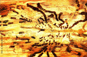 Galerías maternas y larvarias de Orthotomicus (Foto: Enrique Martín Bernal)