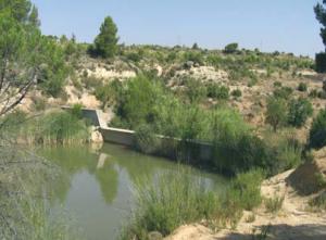 Planes de conservacion de suelos en la provincia de Albacete RR1