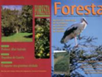 Reportaje los cincuenta primeros numeros de foresta