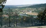 MFO6 La restauracion arborea del monte incendiado en Collado Mediano en el ano 2009