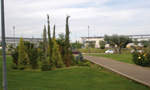 MNU9 Ajardinamiento y nuevas plantaciones en el campus de la Universidad Rey Juan Carlos