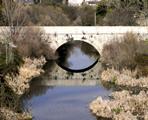 ENP7 El Parque Regional del Curso Medio del rio Guadarrama y su entorno
