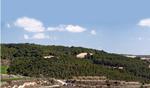 MN2 Las reservas forestales de Alava-Araba