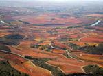 GF7 La restauracion forestal en la comarca de Rioja Alavesa
