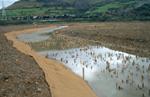 GF8 Restauracion ambiental de las instalaciones de la CLH en el estudio del rio Barbadun en Musquiz
