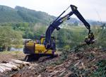 Gestión Forestal: Mecanización forestal en Euskadi: tala y desembosque