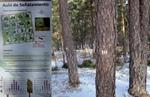 CT1_los senalamientos forestales una herramienta imprescindible para mejorar nuestros bosques