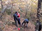 Esp5_Criterios e indicadores geneticos para la gestion forestal
