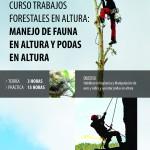 CURSO PRESENCIAL: TRABAJOS FORESTALES EN ALTURA: MANEJO DE FAUNA EN ALTURA Y PODAS EN ALTURA (18 HORAS)-MADRID