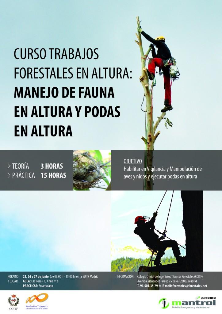 CARTEL CURSO TRABAJOS FORESTALES EN ALTURA-MADRID